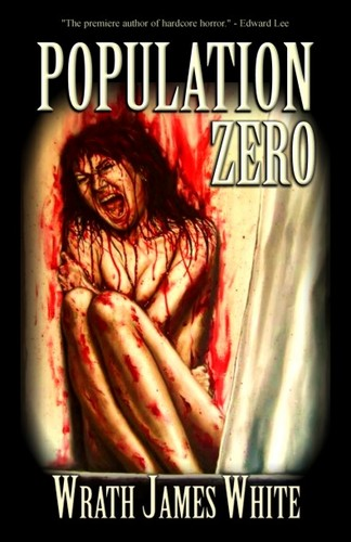 pop zero book cover