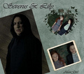 severus and lily - severus-snape-and-lily-evans fan art