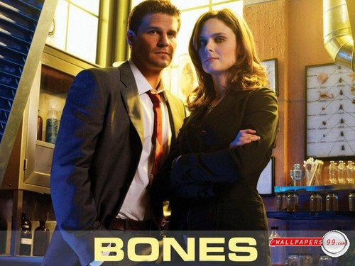 Bones!♥ - bones-and-castle Wallpaper