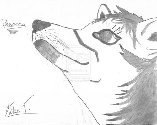 Breannna The भेड़िया