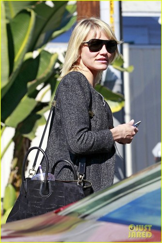 Cameron Diaz: Wednesday Workday in L.A.