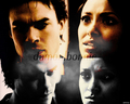 Damon and Bonnie - bonnies-multi-shippings photo