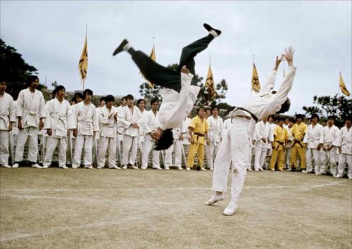 Flip kick