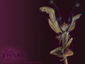 Foot Fungus Wallpaper - brian-froud wallpaper
