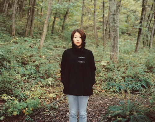 Utada Hikaru wallpaper containing a sitka spruce, a ponderosa, and a douglas fir titled Hikki