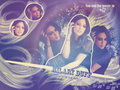 HilaryD! - hilary-duff wallpaper