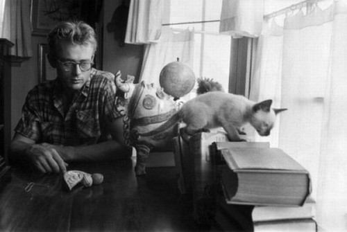 James Dean with Marcus the cat