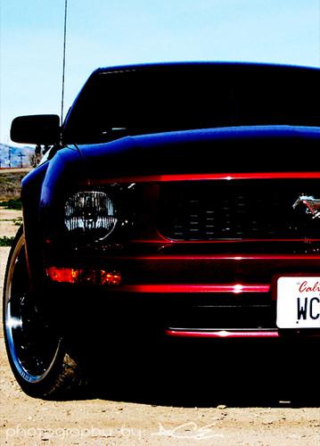 Mustang! ;)
