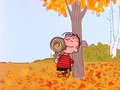 Peanuts - peanuts wallpaper