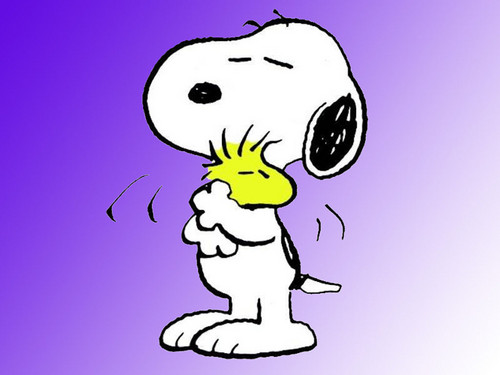 Peanuts wallpaper with anime entitled Snoopy