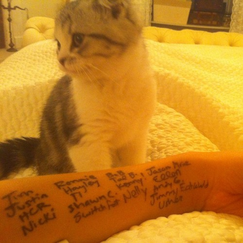Taylor's CMA Thank-You's and Meredith
