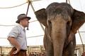 WFE stills - water-for-elephants photo