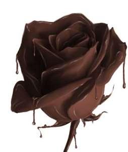 chocolat rose
