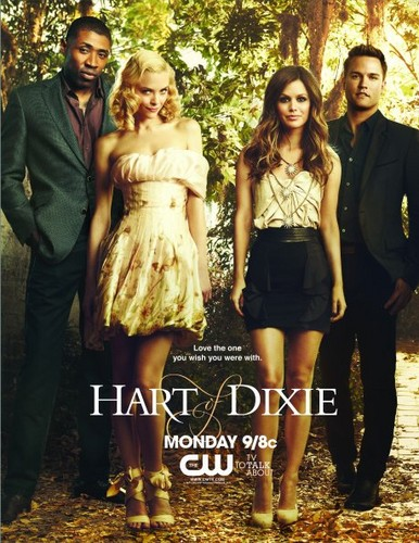 new hart of dixie  poster - hart-of-dixie Photo