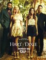 new hart of dixie poster