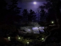 Dark Woodland Night Wallpaper - sesshyswind wallpaper