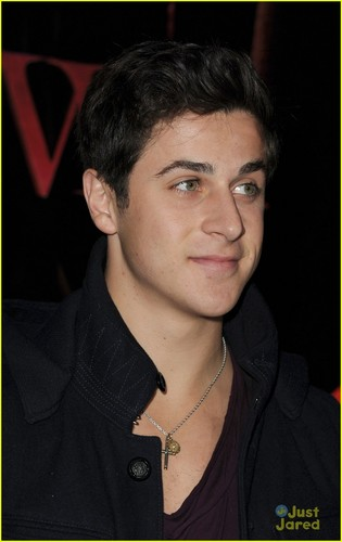 David Henrie at the premiere of The Twilight Saga: Breaking Dawn - Part 1 in Los Angeles
