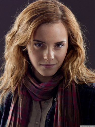 Deathly Hallows Part 1 Promo