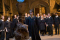 GOF - harry-potter-and-the-goblet-of-fire photo