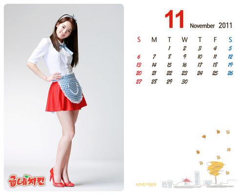 Girls' Generation Hyoyeon Goobne November calendar