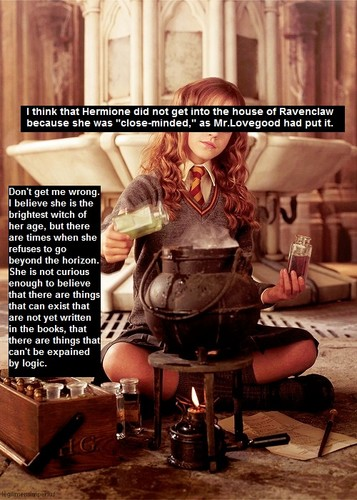 Harry Potter Confession: Why Hermione wasn't in ravneclaw