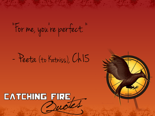 Hunger Games Catching Fire Quote
