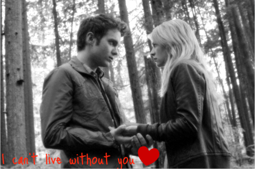 I can't live without anda (adam&Cassie)