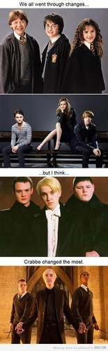 I think Crabbe had changed the most... - death-eater-roleplay Photo