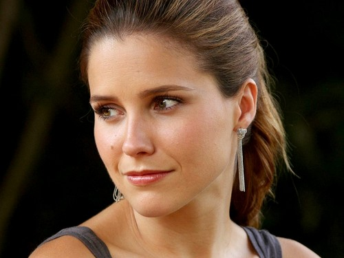 Sophia Bush wallpaper containing a portrait called Lovely Sophia Wallpaper ☆