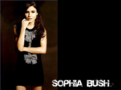 Lovely Sophia Wallpaper ☆ - sophia-bush Wallpaper