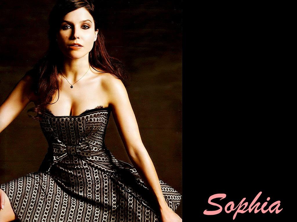 Baile de primavera (trama grupal) - Página 2 Lovely-Sophia-Wallpaper-sophia-bush-26852053-1024-768