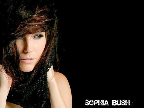 Sophia kichaka karatasi la kupamba ukuta probably containing a portrait entitled Lovely Sophia karatasi la kupamba ukuta ☆