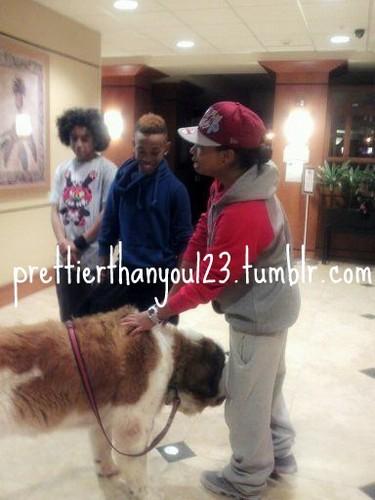 Roc with a BIG Dog