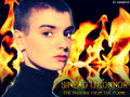 Sinead O'Connor - The Phoenix From The Flame