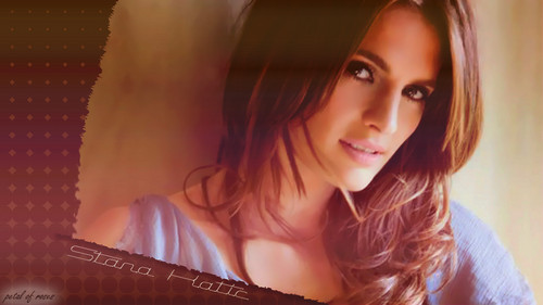 Stana Katic wallpaper containing a portrait called Stana wallpapers