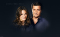 Stana wallpapers - stana-katic wallpaper