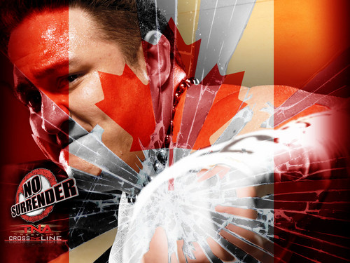 TNA PPV mga wolpeyper Lot