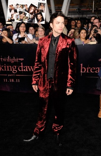 breaking Dawn Premier, Jackson Rathbone
