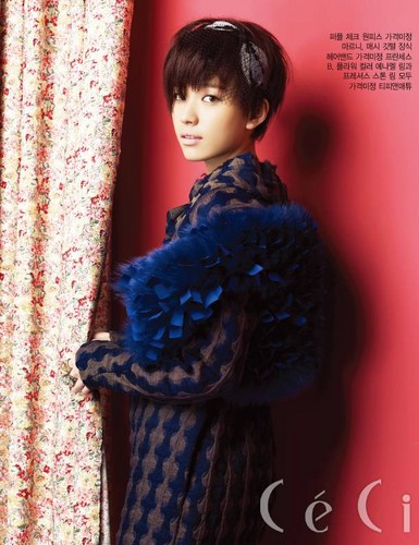 Han Hyo Joo wallpaper with a fur coat called hyo joo