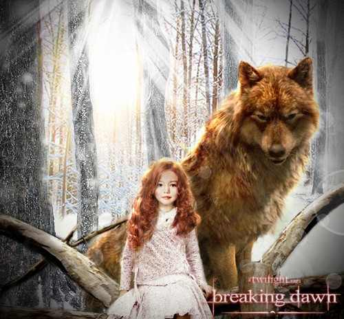 Twilight Series wallpaper called nesse and jaccob