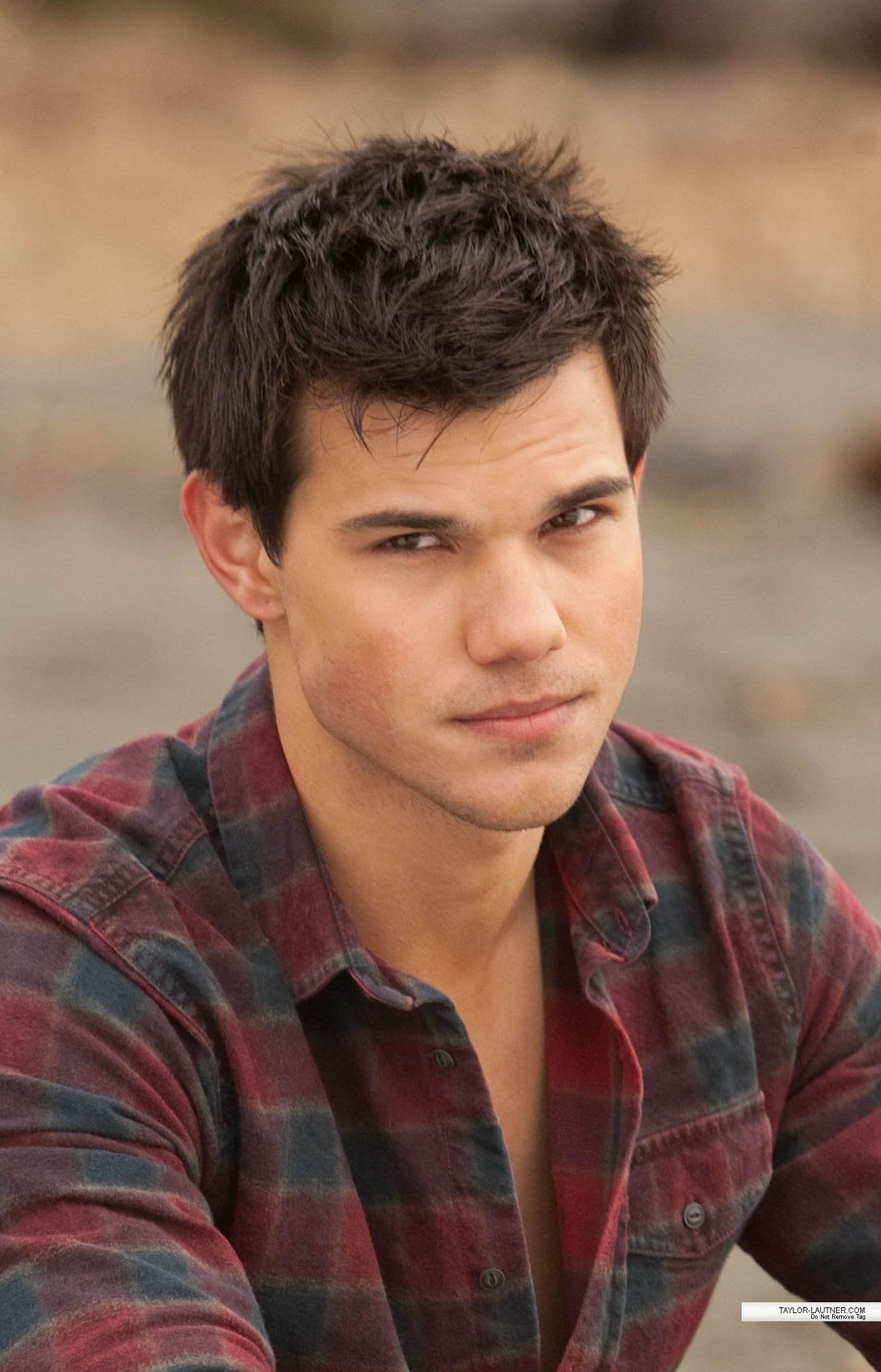 Jacob Black images new breaking dawn pic HD wallpaper and background ...