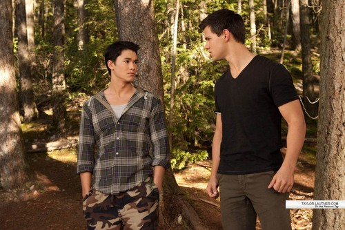 new breaking dawn pic