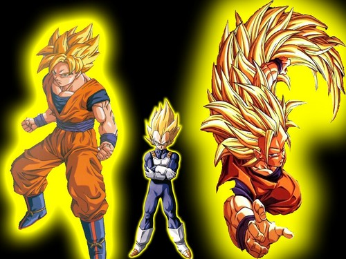 team of saiyans
