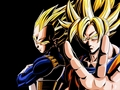 the best team-goku and vegeta - dragon-ball-z photo