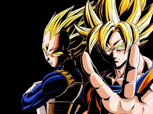 Dragon Ball Z wallpaper possibly with anime titled the best team-goku and vegeta