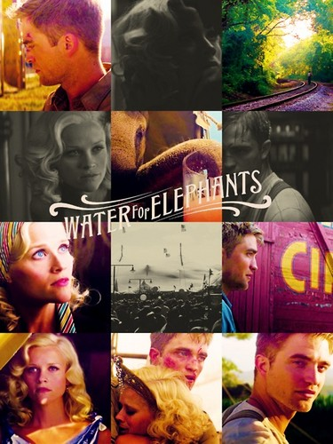 ► water for elephants; - water-for-elephants Fan Art