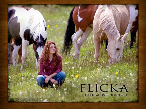 Alison Lohman in Flicka achtergrond 3
