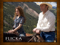 Alison Lohman in Flicka Wallpaper 4