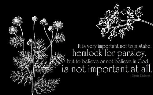 Atheism wallpaper titled Hemlock & Parsley