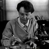 Barbara McClintock - zutaradragons-storys-poems-and-pictures Icon
